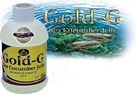 obat infeksi lambung jelly gamat gold g